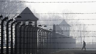 Auschwitz fence, 12 Jan 05