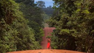 High earners were persuaded to invest in projects focused on reforesting areas of Brazil
