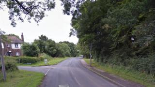 Pope Lane, Whitestake