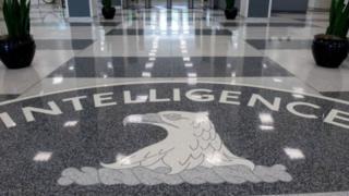Борбордук чалгын кызматынын өкүлдөрү жана британдык расмийлер Wikileaks жарыялаган документтер боюнча комментарий берүүдөн баш тартты.
