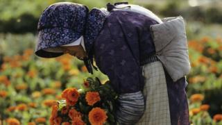 Anciana en Japón