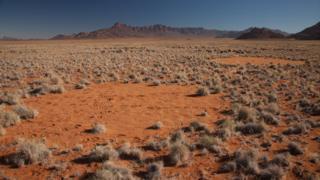 Fairy circle in Namib desert