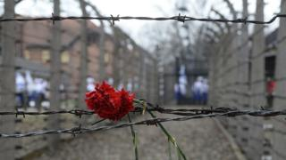 Flower placed in barbed wire at Auschwitz (file photo)