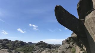 batu, penis