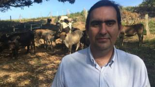 Manuel Vicente Parra stands with cattle grazing in the background
