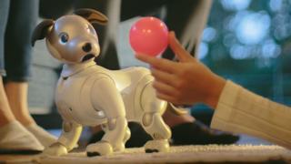 The new Sony Aibo robot dog pet