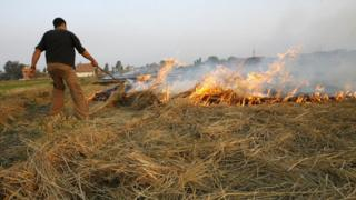 An Egyptian farmer burns hay stubbles in the Nile delta village of Damerah near al-Mansura City, 130 kms north of Cairo, 20 October 2007