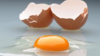 अंडी, चिकन, अन्नधान्य, व्यापार, व्यवसाय.