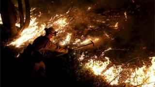 A CalFire firefighter battles the Tubbs Fire near Calistoga, California on 12 October.