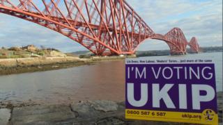 UKIP sign