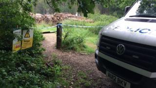 Police vehicle near East Harling