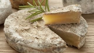 raw milk cheese