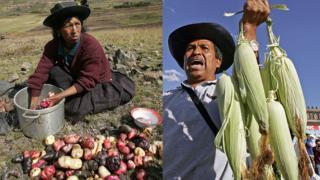 Mujer peruana con papas y hombre mexicano con maíz