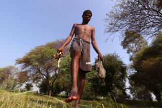 Chotu carries animal bones