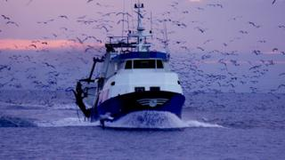 Fishing boat (generic image)