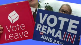 Vote leave and vote remain signs
