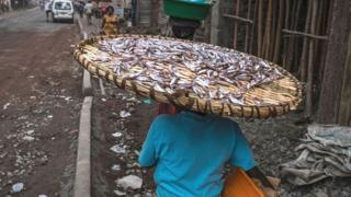 Woman carry a large tray of small fish in the street in Goma