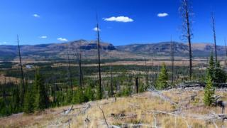 Parque Nacional de Yellowstone, en Wyoming. (Foto: cortesía familia Means)