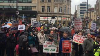 Smithy Wood protest, Sheffield (March 2017)