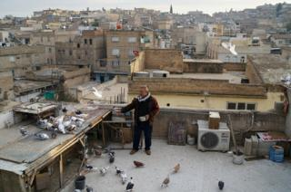 Resit Guzel, 55, feeds his pigeons on top of a roof