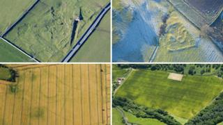 Composite image of fields