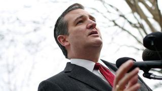 Texas Senator Ted Cruz talks about the Brussels bombing.