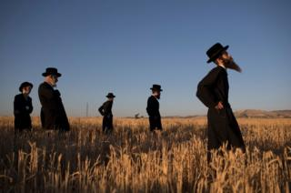 Ultra-Orthodox Jews pray
