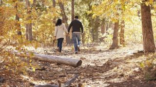 Una pareja camina por un bosque