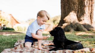 Prince George playing with his dog Lupo