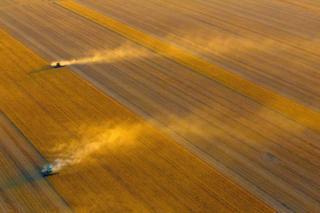 Фото ферм Австралії