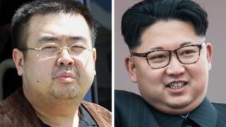 Hai anh em nhà Kim