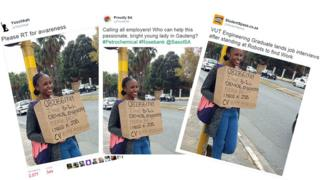 Screengrab of tweets about unemployed South African graduate Anthea Malwandle