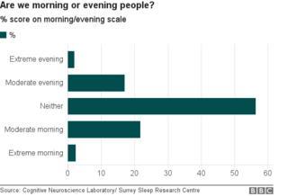 _98537285_chart_morning_evening_distributionfinal.png