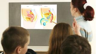 Урок сексуального воспитания в английской школе