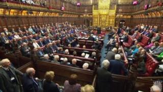 مجلس اللوردات البرطاني