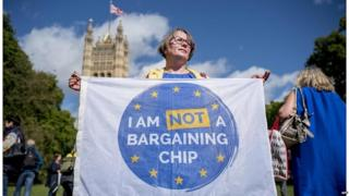 Anti-Brexit demonstrator outside Parliament