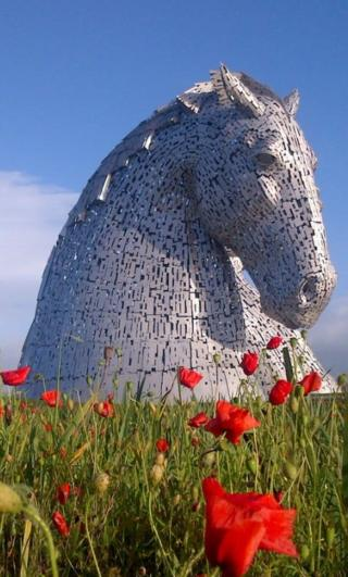 Kelpies with poppies