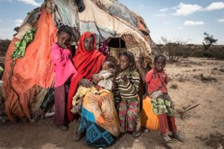 Saado travelled from the drought-stricken eastern region of Somaliland after one hundred of her livestock died, and settled with her four children in the west of the country near the town of Dilla.