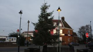 Christmas Tree in Kent