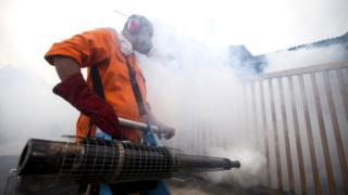 fumigação na Malásia