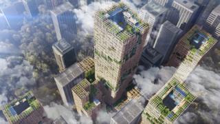 อาคาร W350 สร้างด้วยไม้เป็นหลัก โดยใช้เหล็กในการก่อสร้างเพียง 10% เท่านั้น