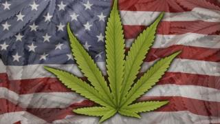 Folha de Maconha na bandeira dos EUA