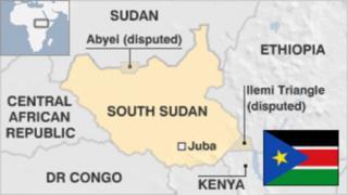 Ndege ya abiria yaanguka Sudan Kusini