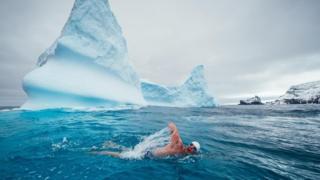 Kutupta yüzen adam