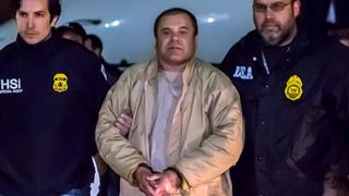 Joaquin Guzman Loera, known as El Chapo, arrives in New York following his extradition from Mexico. 19 Jan 2017