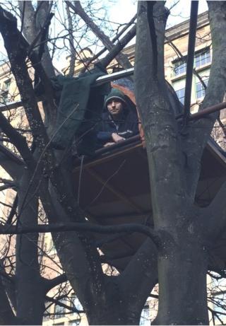 Tree protest