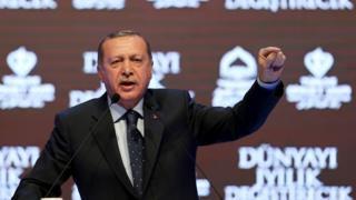 土耳其总统厄尔多安