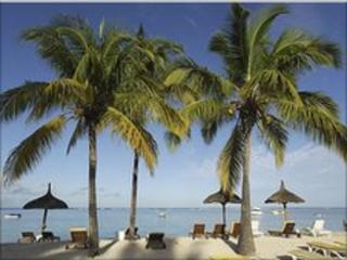 Beach scene with palm trees on the island of Mauritius