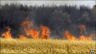 Dry grass burns near the town of Voronezh 500km (294 miles) south of Moscow, 31 July 2010