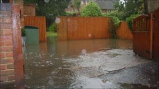 Flooded garden in